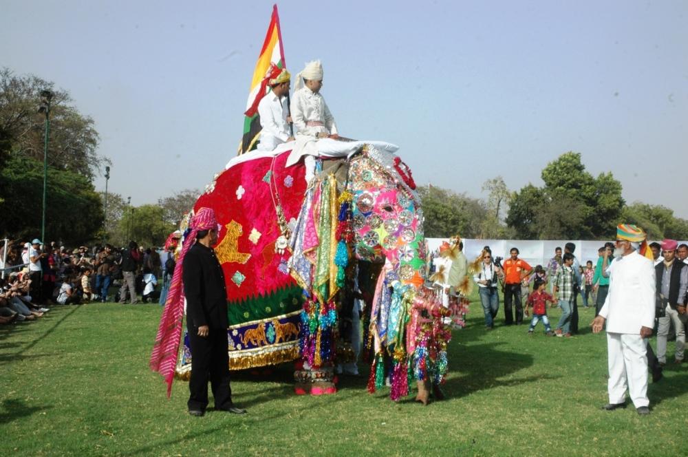 DSC_0320 - File Photo of Elephant Festival (1)