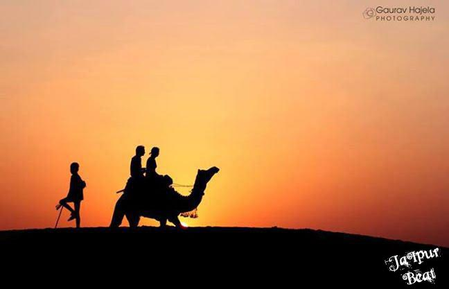 camel-safari-1