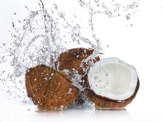 27611-coconut_main_newbeauty.png.660x0_q80_crop-scale_upscale