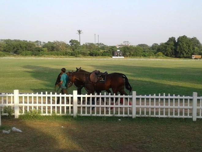 royal horse riding