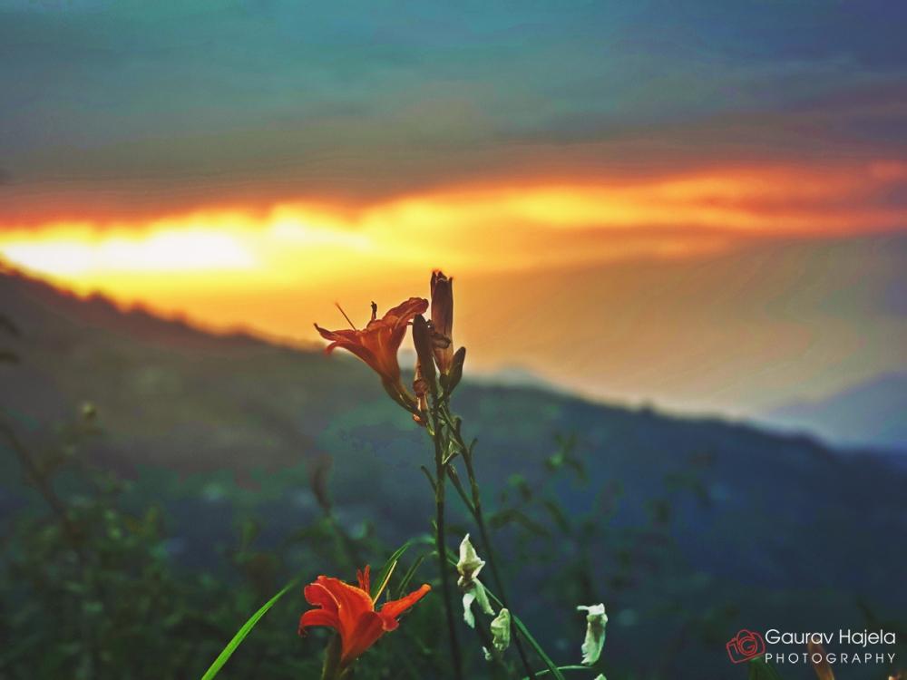 Sunset in Himachal Pradesh