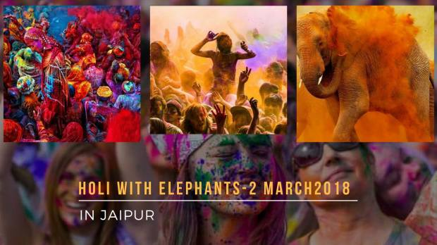 holi with elephants.jpg