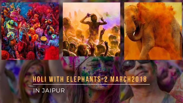 holi with elephants.jpg