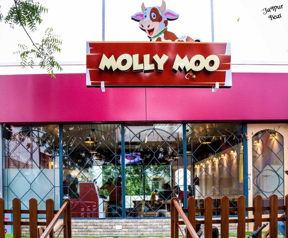 Molly Moo- outdoor ambience.JPG
