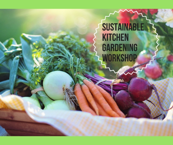Sustainable kitchen gardening workshop.jpg