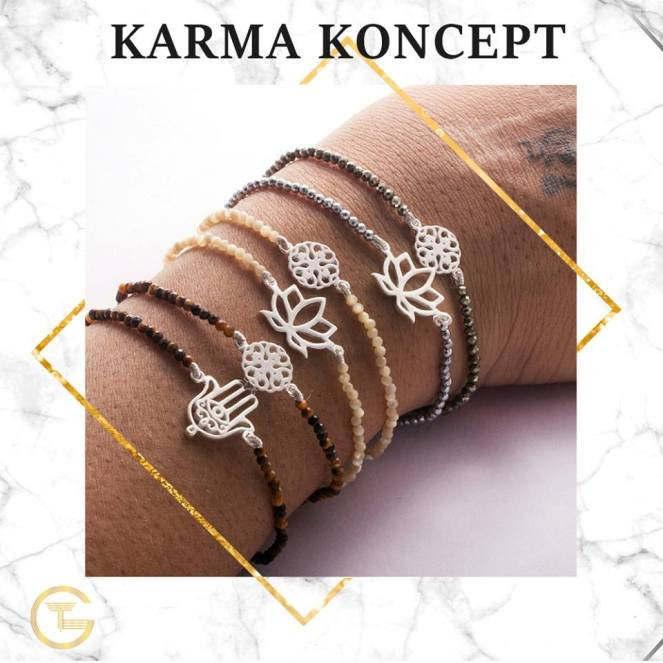 karma koncept